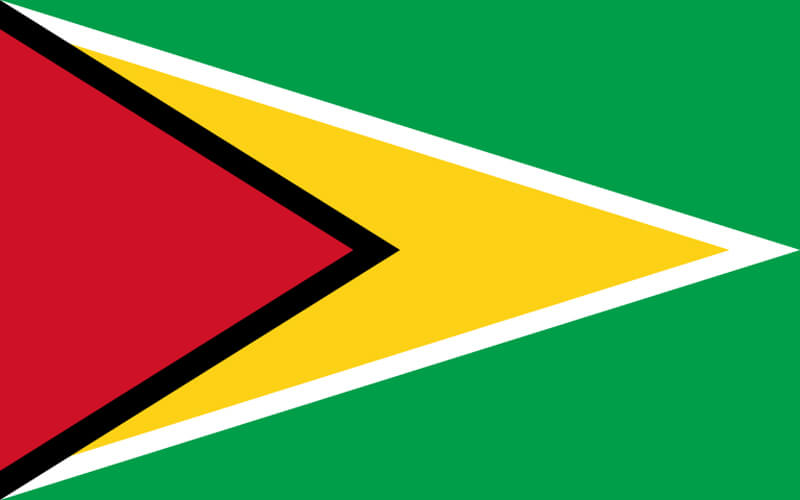 Erzurum Guyana Vize
