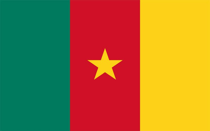 Erzurum Kamerun Vize