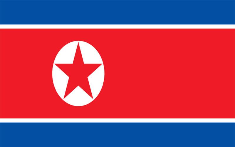 Erzurum Kuzey Kore Vize