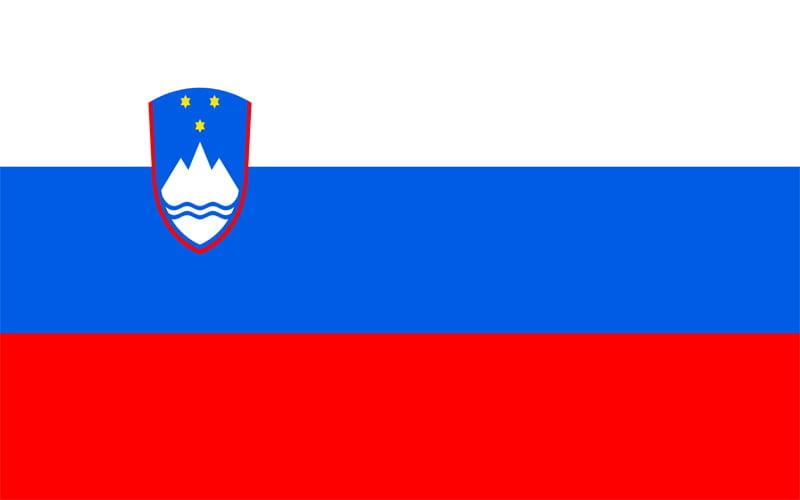 Erzurum Slovenya Vize