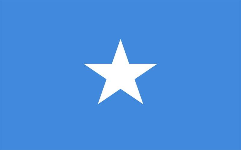 Erzurum Somali Vize